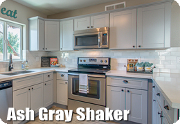 Ash Gray Shaker